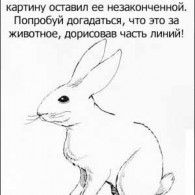 Распознай кролика!
